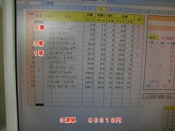 4月4日中山4R.JPG